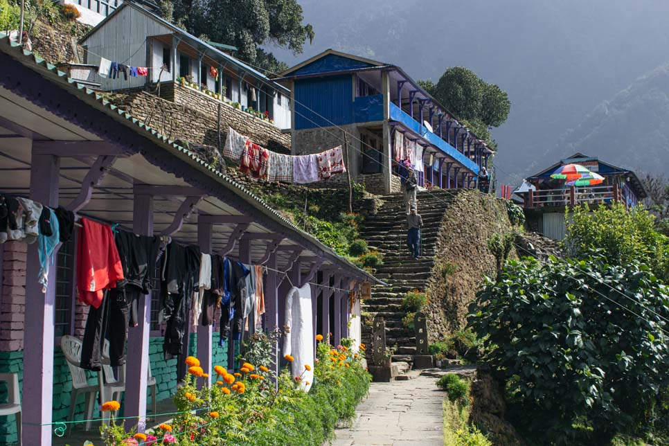 trekking sinuwa nepal